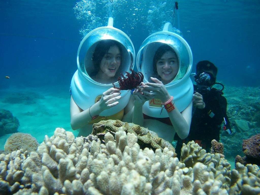 Ngày 2 - Lặn ngắm san hô tại Bãi Tranh